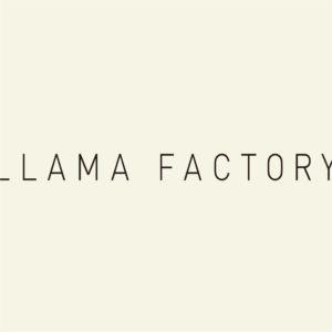 LLAMA FACTORY